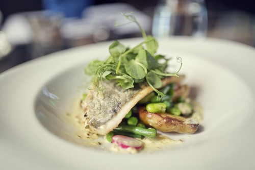 small Grilled bream with a fricassee of beans (2)