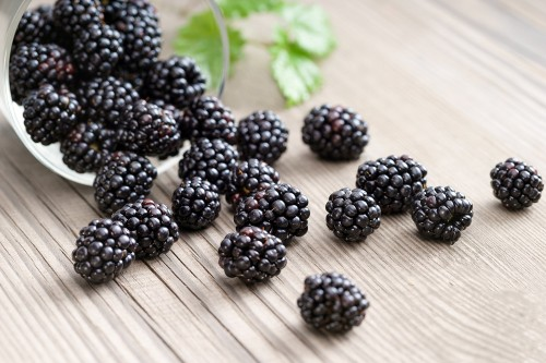 Blackberries in bowl on wooden background. Close up top view high resolution product. Harvest Concept