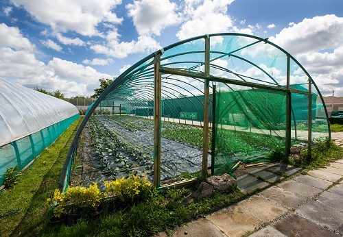The Clink Gardens at HMP Send